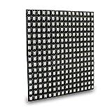 Jodie Bernol Fields Board WS2812B 256 Pixel Digital 5050 RGB Colore Sogno Modulo programmato Strip DC5V 16 * 16cm