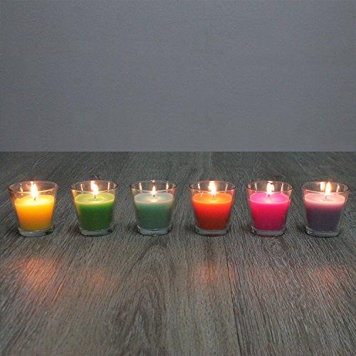 12er Set Citronella Duftkerze im Glas je Ø6,5xH6,5cm mit Zitronenöl-Duft Outdoor Kerzen