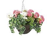 closer2nature hbks30Künstliche Geranien Display in 25,4cm rund Weiden Blumenampel, Polyester, rosa/weiß, 25x25x25 cm