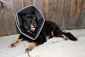 "All Four Paws ""The Comfy Cone"" Halskrause Für Haustiere 2"