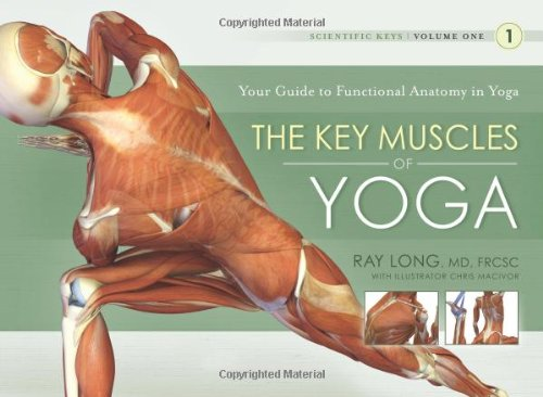 key-muscles-of-yoga-your-guide-to-functional-anatomy-in-yoga-scientific-keys-1