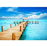 Liwwing FTVLPP-0159-350x245 - Vellón fotografía de fondo 350x245 cm - cima! premium plus fondo de pantalla! murales de papel tapiz mural xxl foto mural de la pared del papel pintado de la pared wanddeko playa del mar playa -. n ° 159