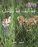 Tame Cat, Wild Cat: Level 8