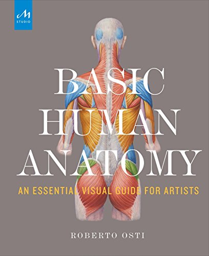 Basic Human Anatomy: An Essential Visual Guide for Artists por Roberto Osti