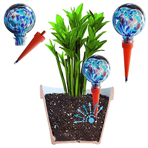 2 Large Plantpal Decorative Gl Watering Globes, Plant Watering ... on drip system for potted plants, automatic waterers for house plants, indoor potted plants,