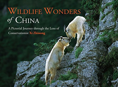 Wildlife Wonders of China: A Pictorial Journey Through the Lens of Conservationist Xi Zhinong (Wildlife China)