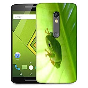 Snoogg Green Frog Designer Protective Phone Back Case Cover For Moto G 3rd Generation