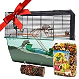 Starter Kit for Small Rodents Hamsters Mice Gerbils Accessories