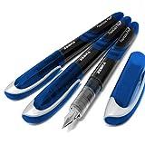 Best Disposable Pens - Zebra Fuente - Disposable Fountain Pen - Blue Review