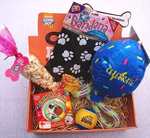 Paradise Pets DOG CELEBRATION BOX BIRTHDAY XMAS EASTER WITH TOYS DOG BEER POPCORN AND CHOC BAR