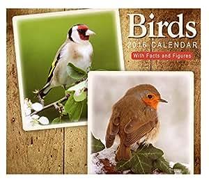 2016Oiseaux Calendrier mural carré 51cm x 25cm 16mois faits et chiffres de cadeau de Noël chouette Cygne Canard Macareux Grue Ornithologie ornithologues