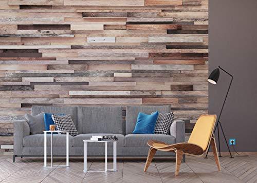 AG Design Palmen, Vlies Fototapete für Wohnzimmer, Flur, Schlafzimmer, Küche, Gartenhaus, 360 x...