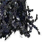 Yalulu 6.5 Yards x 15cm Breite Pailletten Quaste Seidig Fransen Geschnitten Fransenborte Kostüm Quaste trimmen Garment Apparel Spitzenborte Nähzubehör (Schwarz)