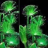 Semi di fiori fluorescenti - Semi di fiori di smeraldo rari, piante che emettono luce notturna, arredo da giardino, 100 pezzi