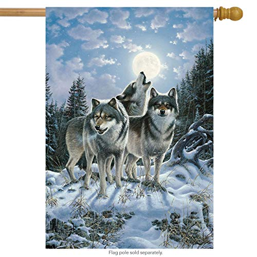 CHKWYN Midnight Watcher Winter House Flag Wolf Pack Howling for Party Outdoor Home Decor Size: 28-inches W X 40-inches H -