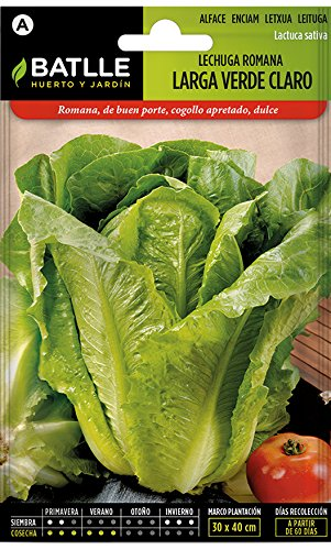 Batlle Gemüsesamen – Hellgrüner Römersalat (6400 Samen)
