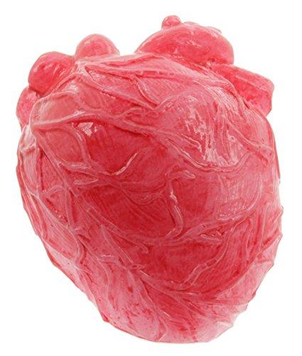 Cepewa Halloween blutige Körperteile (Blutige Herzen)