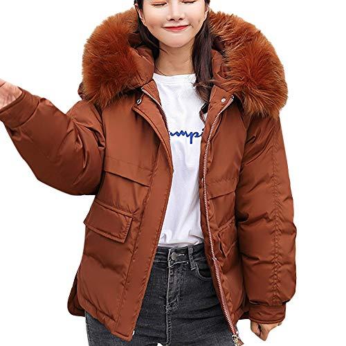 (Damen Steppjacke Winter Warm Coat Wintermantel Kurz Winterjacke Dickere mit Kapuze MYMYG Slim Fit Outwear Baumwollkleidung Parkajacke Reißverschluss Jacke Steppjacke (Braun,EU:44/CN-2XL))