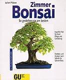 Zimmer-Bonsai. So gedeihen sie am besten
