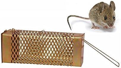 Krisah 1 pcs Big Size Rat/Mouse/ Rodent Trap Cage (1, Large)