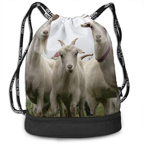 Sporttaschen, Rucksäcke,Polyester Drawstring Bag Theft Proof Water Resistant Large Size Shoulder Backpack Large Capacity for Basketball, Baseball, Sports & Workout Gear (Funny Goat) -