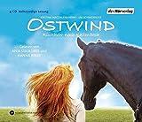 Ostwind: Rückkehr nach Kaltenbach (Bd. 2)