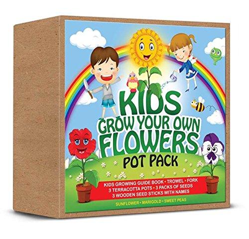 demand-kids-grow-your-own-flowerpot-pack