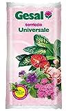 1PZ gesal Blumenerde universal LT.20