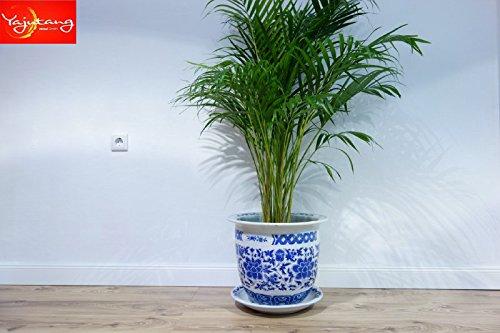 China Porzellan Blumentopf Pflanztopf Blau-Weiß Stil mit Untersetzter Ø 40cm P0061-6