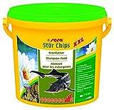 sera 07153 pond stör chips XXL 3800 ml - das Störfutter für größere Störe ab ca. 40 cm
