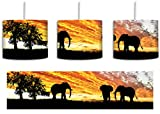 Elefanten in der afrikanischen Wüste bei Sonnenuntergang inkl. Lampenfassung E27, Lampe mit Motivdruck, tolle Deckenlampe, Hängelampe, Pendelleuchte - Durchmesser 30cm - Dekoration mit Licht ideal für Wohnzimmer, Kinderzimmer, Schlafzimmer