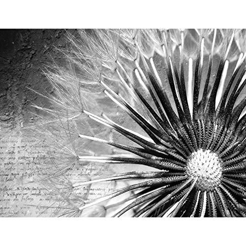 Fototapete Pusteblumen Schwarz Weiß Vintage 396 x 280 cm Vlies Wand Tapete Wohnzimmer Schlafzimmer Büro Flur Dekoration Wandbilder XXL Moderne Wanddeko Flower 100% MADE IN GERMANY - Runa Tapeten 9023012c