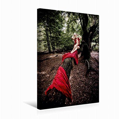 Premium Textil-Leinwand 30 cm x 45 cm hoch Erotische Momente Nicky S. | Wandbild, Bild auf Keilrahmen, Fertigbild auf echter Leinwand, Leinwanddruck