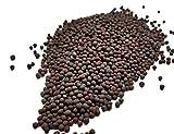Semi di senape Marrone- SPICESontheWEB (100g)