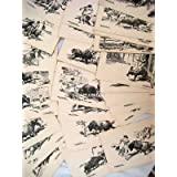 Colección Completa de 35 postales - Colection 35 Postcards : LOS TOROS. Dibujos a plumilla de Antonio Ferrer.
