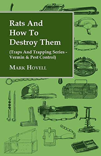 rats-and-how-to-destroy-them-traps-and-trapping-series-vermin-pest-control