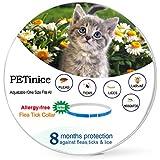 PETinice Collar para pulgas y garrapatas para Gatos, los Mejores tratamientos de Control de pulgas