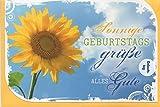 Geburtstagskarte Sonnige Geburtstagsgrüße Alles Gute - Moments