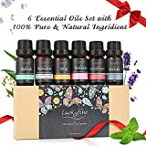 Ätherisches Öl Set, Luckyfine Reines Duftöl Set 6 X 10ml, Essential Oils...