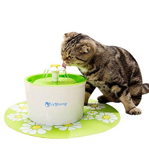 isYoung Pet Fuente Dispensador de agua Automático para Perros y Gatos, Fuente de Perro sano e Higiénico
