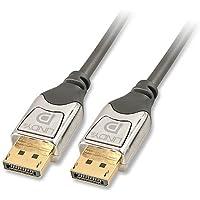 Lindy 41531 DisplayPort Cromo Cavo AV, 1 m,