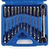 Femor 12tlg.Ringmaulschlüssel Ratschenschlüssel Ratschen Werkzeugkoffer Ringschlüssel Satz