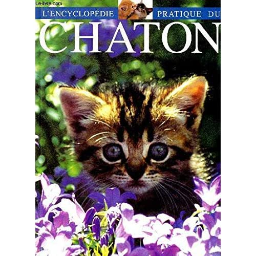 L'encyclopédie pratique du chaton