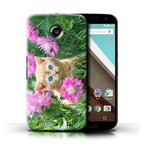 Kobalt® Imprimé Etui / Coque pour Motorola Nexus 6 / Blanc et moelleux conception / Série Chatons mignons Jardin