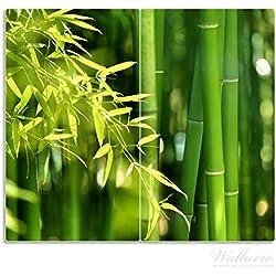 Wallario Herdabdeckplatte/Spritzschutz aus Glas, 2-teilig, 60x52cm, für Ceran- und Induktionsherde, Bambuswald mit grünen Bambuspflanzen