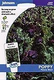 Johnsons Samen, Bildhaftes Paket Blume Poppy Paeony schwarz 750 Samen