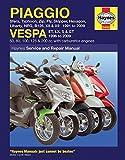 Piaggio Vespa: Sfera, Typhoon, Zip, Fly, Skipper, Hexagon, Liberty, NRG, B125, X8 & X9 1991 to 2009 and Vespa ET, LX, S