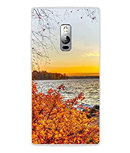 PrintVisa Digital Photgraph High Gloss Designer Back Case Cover for OnePlus 2 :: OnePlus Two :: One Plus 2