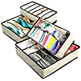 TREXEE Foldable Storage Box Type Non-Smell Drawer Organizer for Socks Bra Tie Scarfs(Beige,4 box) - Set of 4