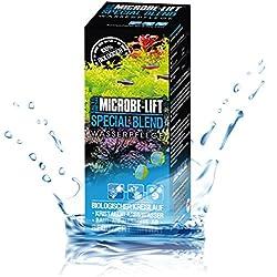 MICROBE-LIFT Special Blend – Wasserpflege Bakterien Süßwasser Meerwasser Aquarium, 473 ml